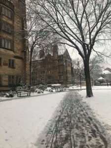 Schneetage an der Yale University in New Haven
